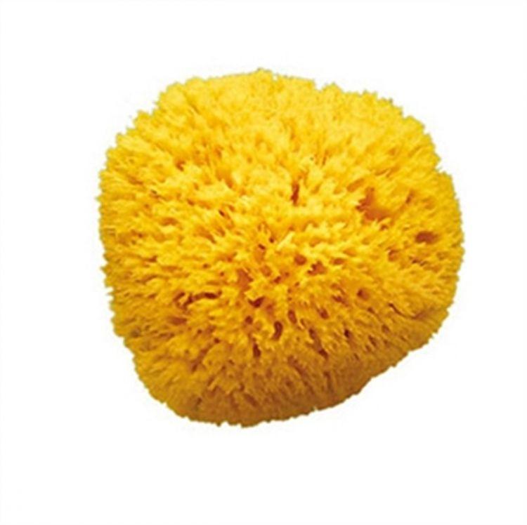 OkBaby - OkBaby Doğal Banyo Süngeri / Büyük